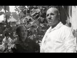 Умение крымских татар обрабатывать сады вызывало восхищение