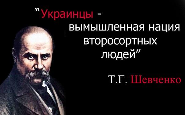 Картинки по запросу украинское бандеровское быдло