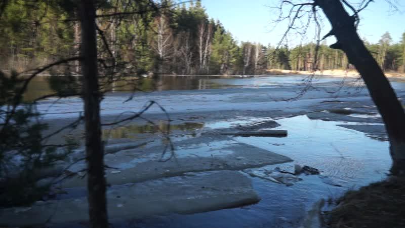 Апрель 2018 река Пра национальный парк Мещёрский