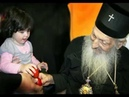 Ангел Сербской Церкви ⁄ Патриарх Павел
