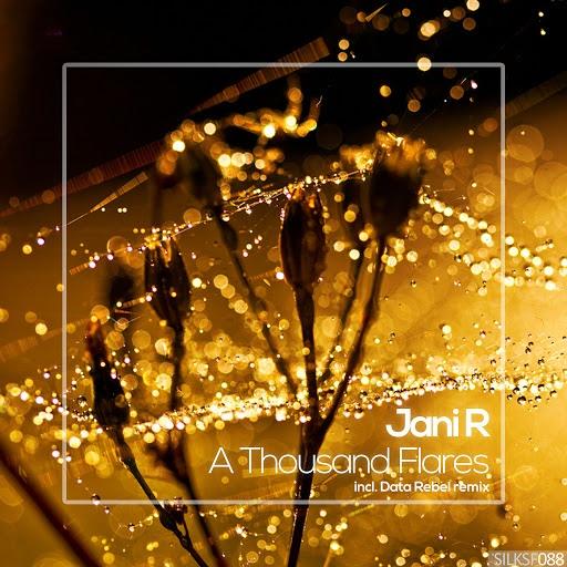 Jani R альбом A Thousand Flares