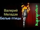 Валерий Меладзе - Белые птицы ( караоке )