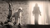 Ты воскрес - Псалом поклонения - Пасха - псалом - Easter song - христианская песня