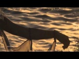 Zero-Project - Celtic Dream Where Ptah &amp Lugus Dreamt Isis &amp Tamesis