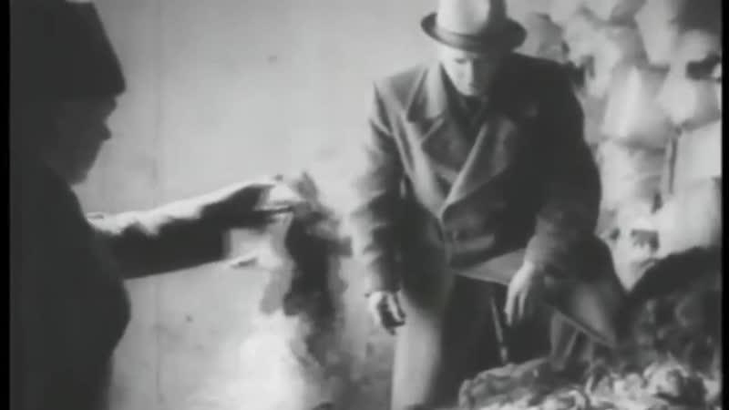АУШВИЦ-БИРКЕНАУ - ФАБРИКА ПО ИСТРЕБЛЕНИЮ ЛЮДЕЙ. (Auschwitz Birkenau, Освенцим)