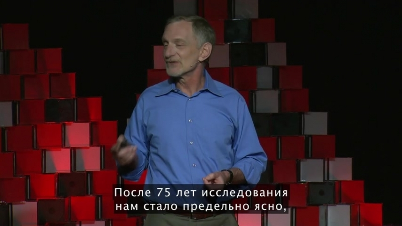 TED Robert Waldinger What makes a good life Lessons from the longest study on happiness