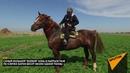 Самый большой боевой конь в Кыргызстане
