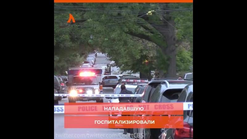 Женщина напала на детский сад АКУЛА