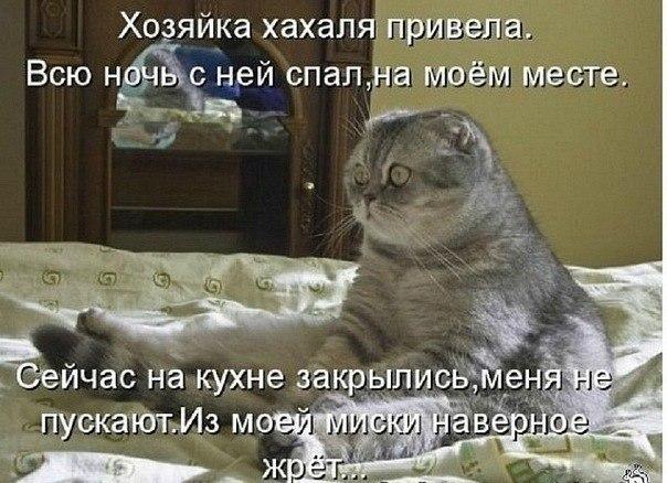 http://cs406518.vk.me/v406518157/96a/iFj8OR7UucM.jpg