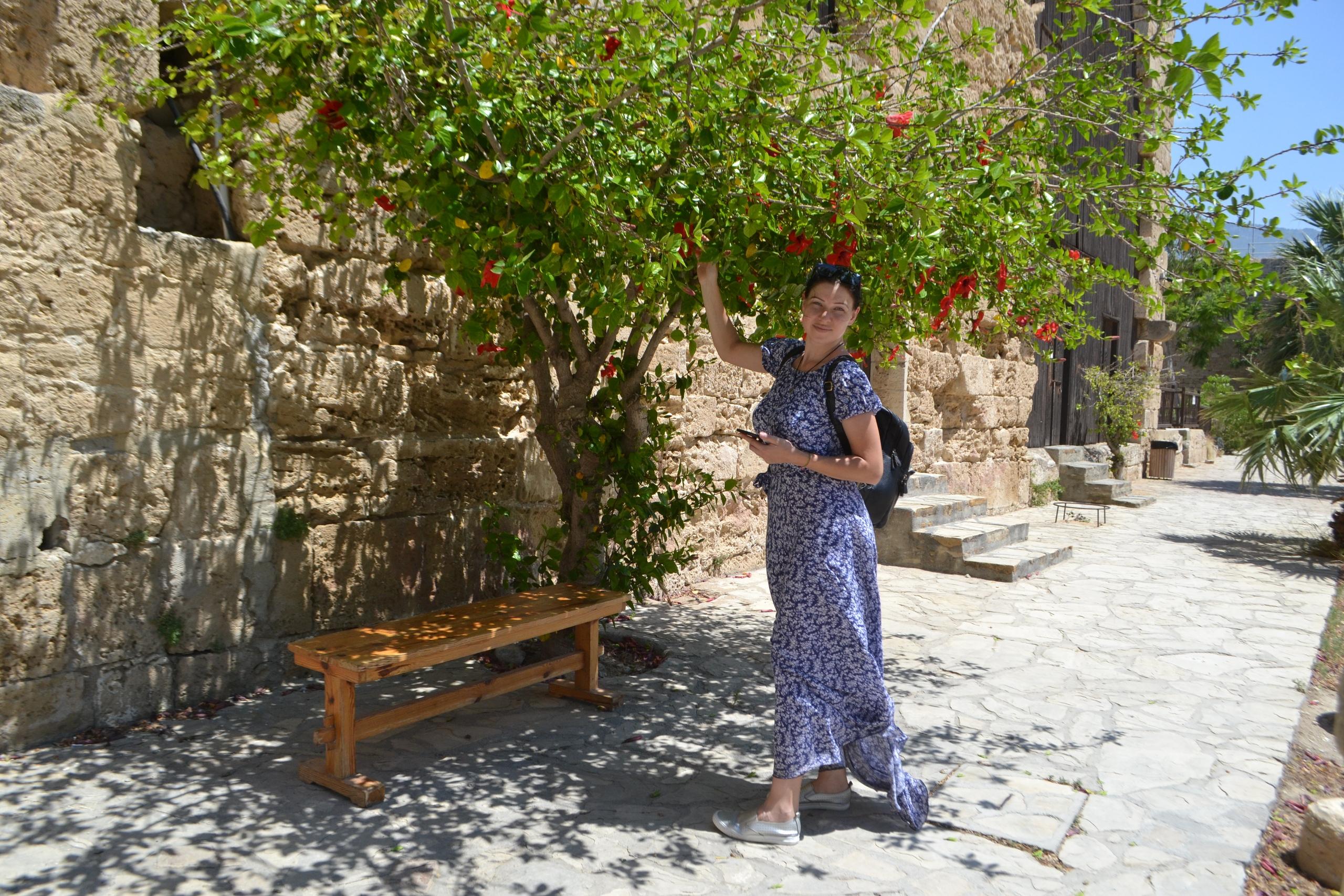 Елена Руденко (Валтея). Северный Кипр. Кериния и Фамагуста. (фото) - Страница 9 UoTxQBsuOII