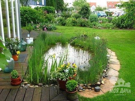 Моя дача л дизайн огород сад цветы