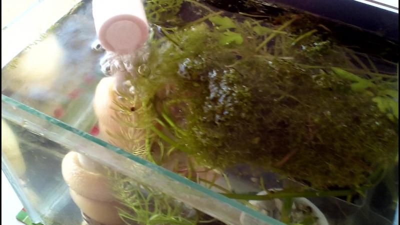 Нано аквариум 7,2 L