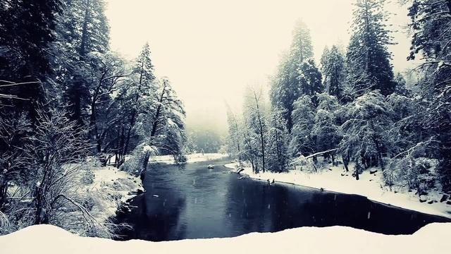 Winter Atmosphere