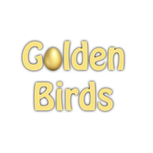 Goldenbirds Boot скачать - фото 3