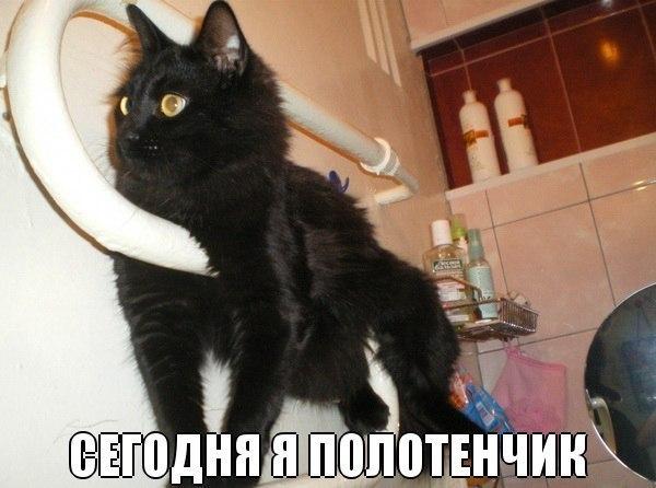 http://cs406626.vk.me/v406626929/a669/K8rXhhrQehw.jpg