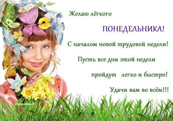 MOBOfqKL_LI.jpg