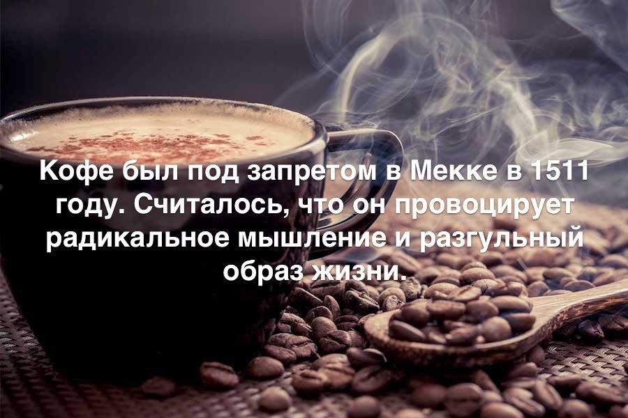 https://pp.userapi.com/c543107/v543107605/35998/v9AJcnzgUpI.jpg