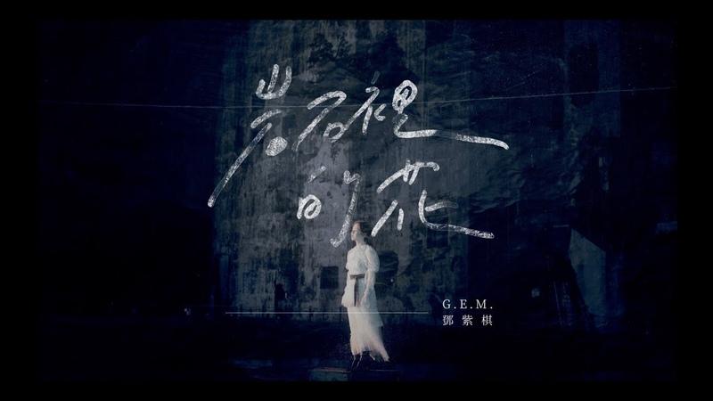 G.E.M.【岩石裡的花 LOVE FINDS A WAY】Official MV [HD] 鄧紫棋