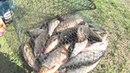 Рыбалка на Рубском озере. Рубское озеро. Ивановская область.