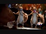 Праздники Праздники Русские Проказники (2019) _ FULL HD 1080p OLISHA, Белки Та