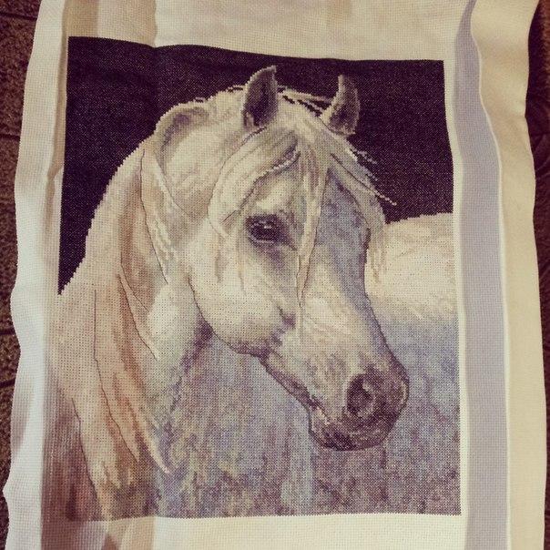 Картинки для вышивки лошадь
