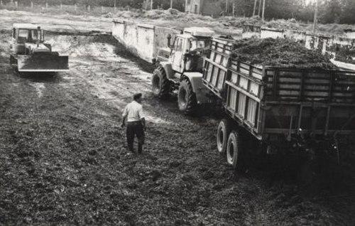 Купить трактор т-25 брянской области
