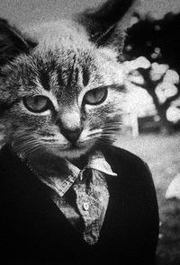 Руслана Грицюк, 29 октября 1987, Геническ, id13191320