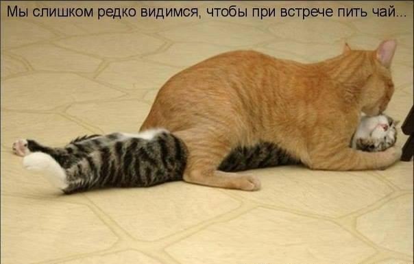 24 новости украины сегодня смотреть онлайн
