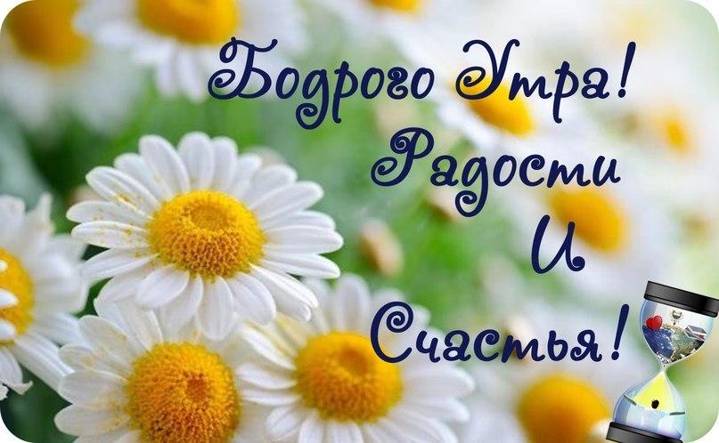 http://cs14107.vk.me/c7005/v7005651/126b5/WMpKWP-L4cA.jpg