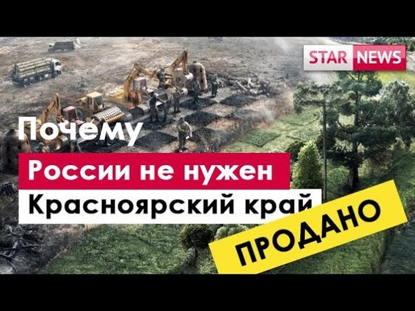 КИТАЙСКАЯ ТАЙГА! Красноярский коррупционный край! Лес Китайцам Россия 2018
