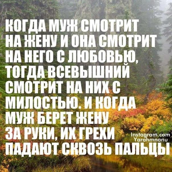 http://cs614631.vk.me/v614631169/196d9/OMT2oAuCGHI.jpg