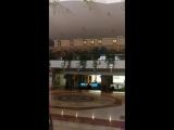 Обзор на отель Sea Gull 4*