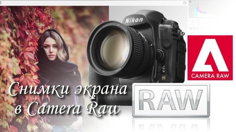 Снимки экрана в Camera Raw - как создать и сохранить разные варианты обработки.
