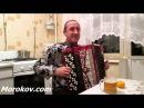 Сергей Мороков одинокая ветка сирени Валерий Залкин Русская Музыка на баяне