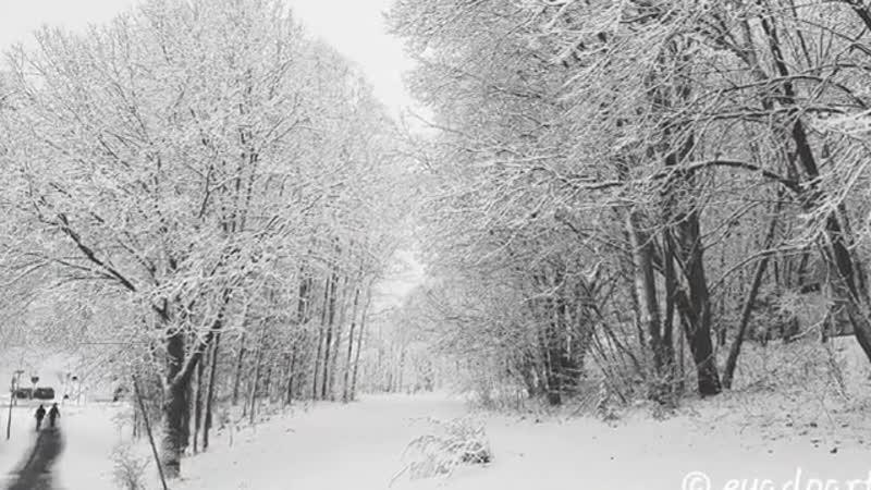 Зима в Стокгольме