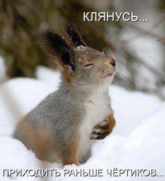 http://cs406117.userapi.com/v406117916/4882/jpwkHctwVUw.jpg