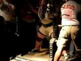 Влад Алхазов - Приседание 567 КГ(абсолютный мировой рекорд)