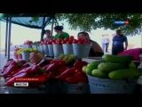 Фрукты Овощи Азербайджана Ленкорань Баку Нараджан август 08 2014