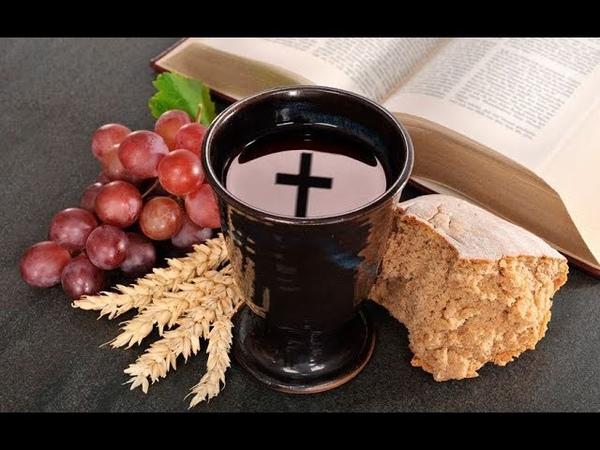 Вино, виноградный сок и разоблачение алкогольных мифов