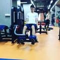 white_lion_72k video