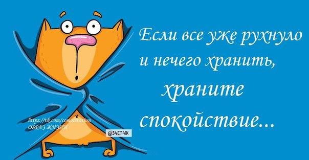 http://cs543104.vk.me/v543104723/71a4/sJWbmQoXdMk.jpg