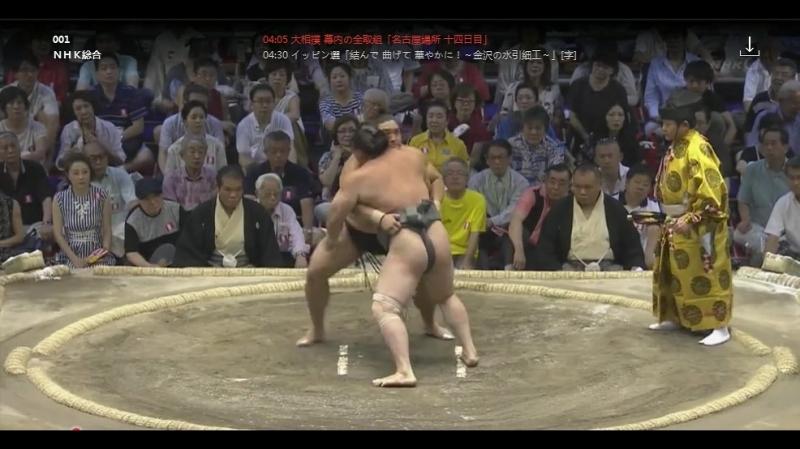 大相撲 幕内の全取組「名古屋場所 十四日目」