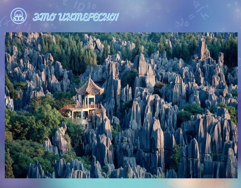 Каменный лес Шилинь, Китай