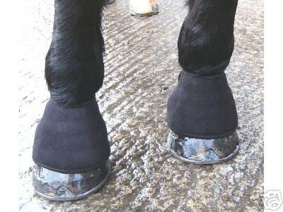 Магнитный ногавок для скакательного сустава болят суставы после стречинга
