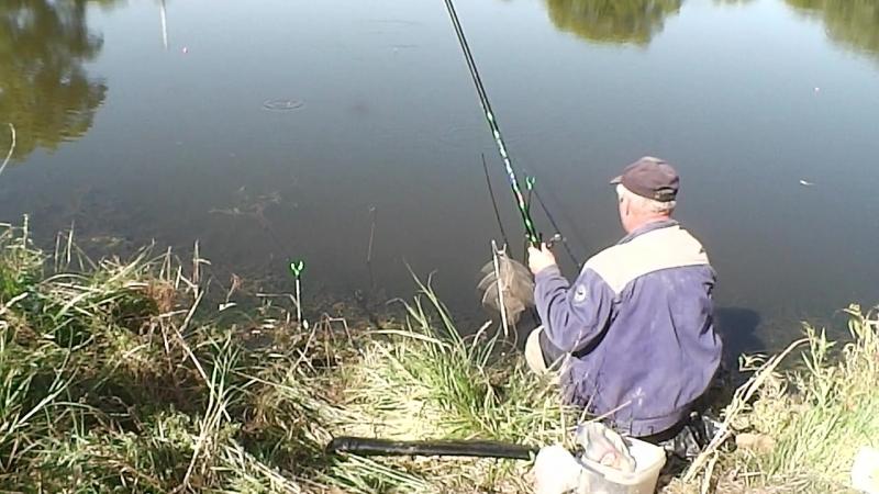 (В-))-Рыб.Хмелевое-Клёв отличный.Отпад-(ЗА д ГРИБОВКА)-КАРАСЬ-150ГР.