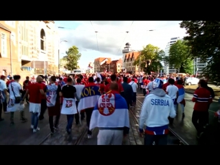 Сербские болельщики в Калининграде #ЧМ2018
