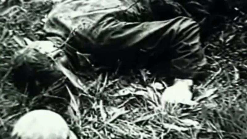 Николай Сиротинин.Один в поле воин.Подвиг 41- го года