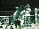 2013 Mike Tyson vs Mitch Green Steve Zouski highlight mix