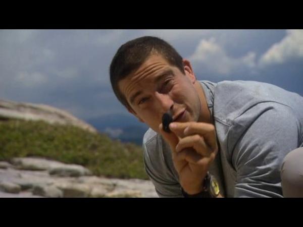 6 Выжить любой ценой Сьерра Невада Man vs Wild Sierra Nevada Все серии 1 сезон 6 серия