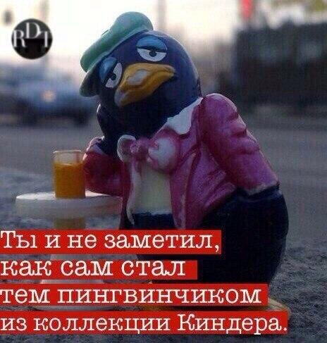 https://pp.vk.me/c543107/v543107171/e97a/hBc01PdtPkY.jpg